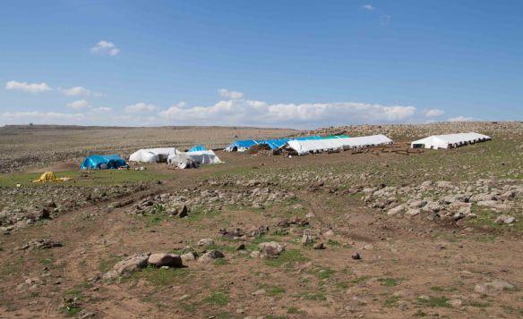Nomad Camp near Siverek, Turkey